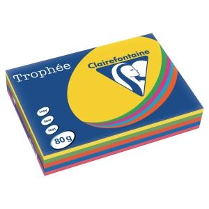 Trophee väripaperilajitelma A4 80g
